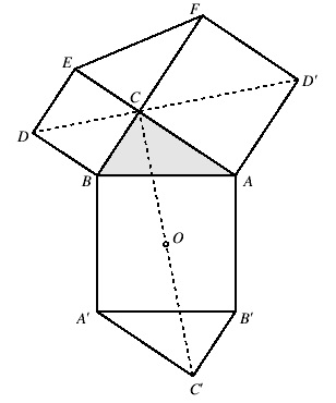 girologia 1