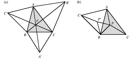 girologia 2